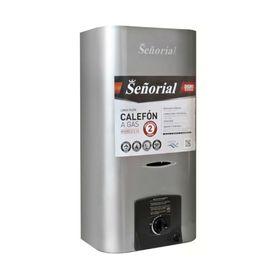 Calefon-Tiro-Natural-Senorial-C-14-Plata
