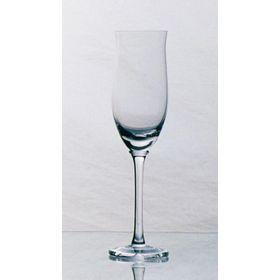 Copa-de-Champagne-Manuela-Set-x-12-Unidades-10010509