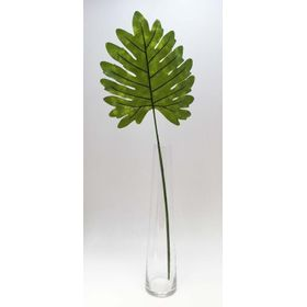 Hoja-Decorativa-Philo-de-Puntas-Artificial-74-cm-x-6-Unidades-10010466