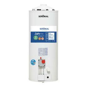 termotanque-a-gas-de-alta-recuperacion-senorial-tsz-50-50lt-90179