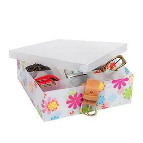 caja-con-9-divisiones-30-x-30-x-9-cm-nouvelle-cuisine-pvc-disenos-surtidos-1050701-10014333